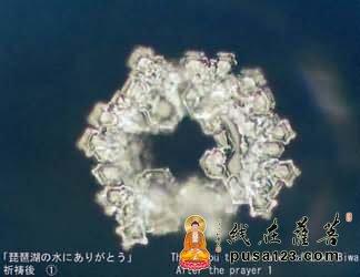结构相似的美丽结晶!